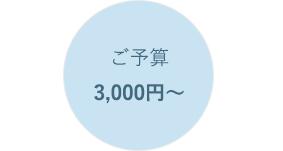 ご予算3,000円