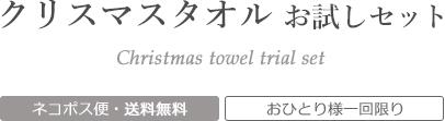 クリスマスの今治タオルお試しセット